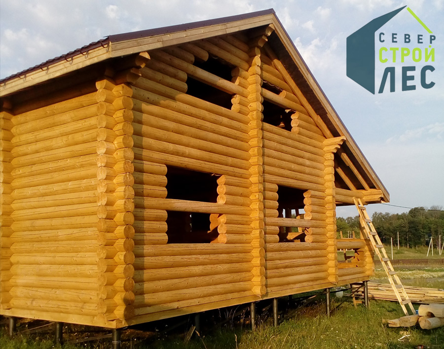 Лучшая древесина для строительства бани